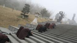 雪竇寺彌勒佛前三步一拜。